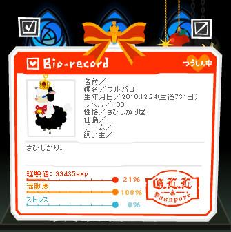 20121224ふゆるちゃんお誕生日.jpg